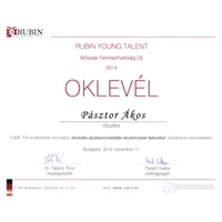 rubin young talent special award